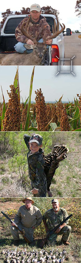 Deer Kill, Sorghum Field, Kid with Turkey & Quail kills
